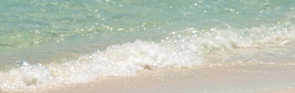 beach_bg
